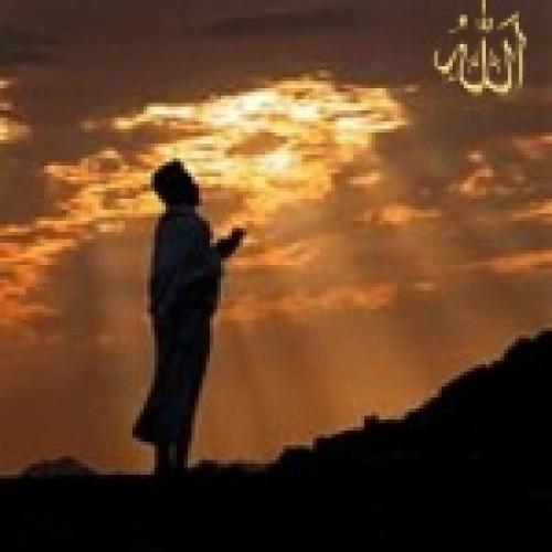 The Ultimate Beloved
